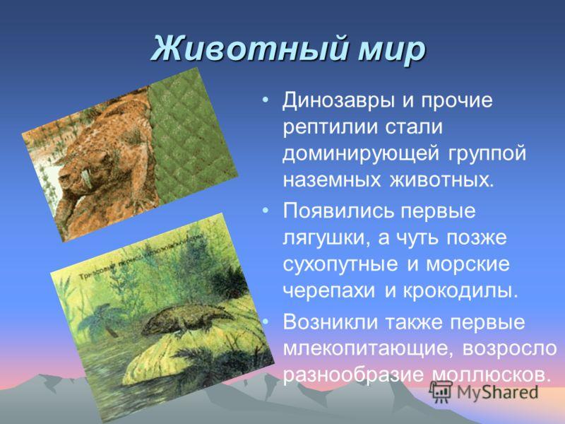 Животный мир Динозавры и прочие рептилии стали доминирующей группой наземных животных. Появились первые лягушки, а чуть позже сухопутные и морские черепахи и крокодилы. Возникли также первые млекопитающие, возросло разнообразие моллюсков.