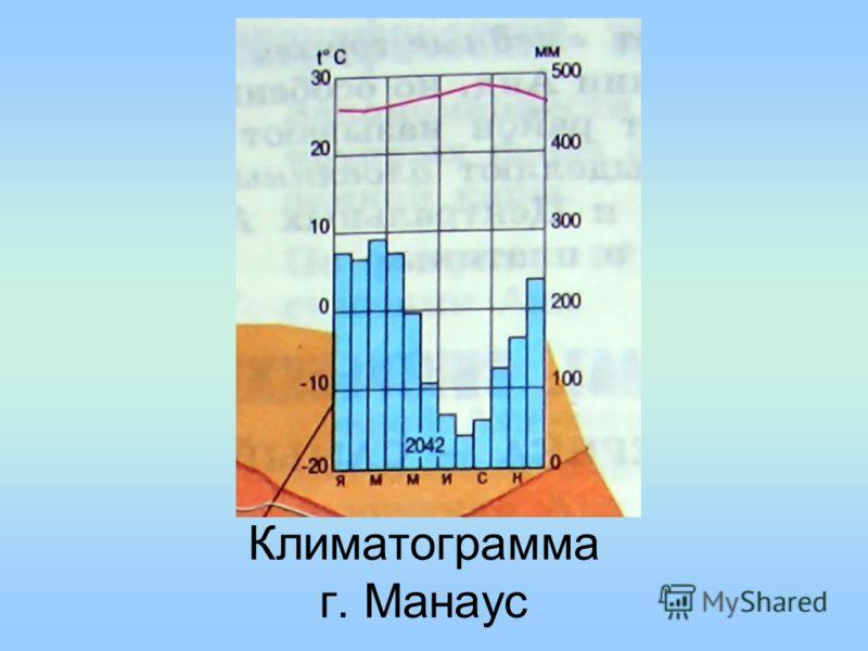 Климатограмма г. Манаус