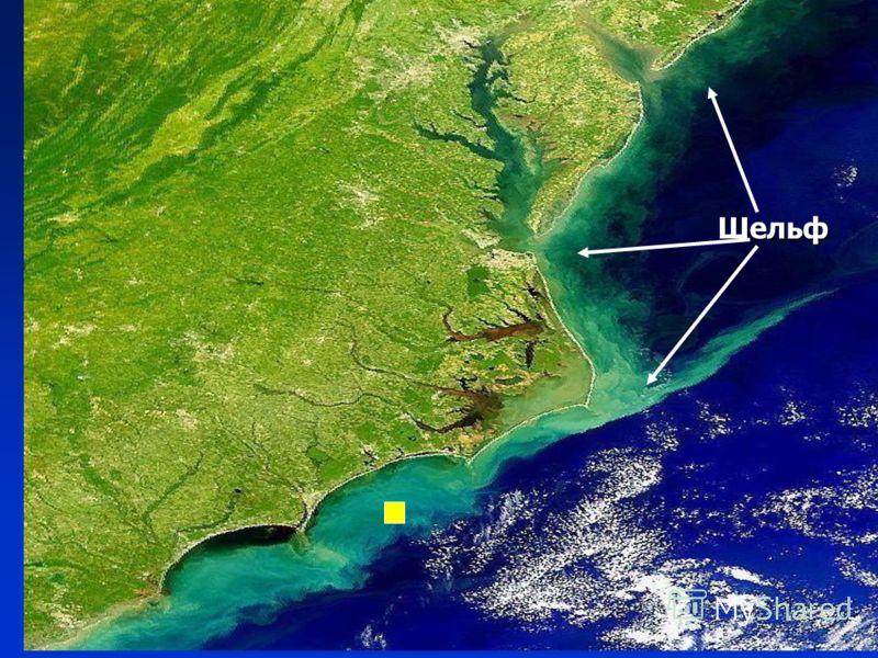 Подводная окраина материков Шельф
