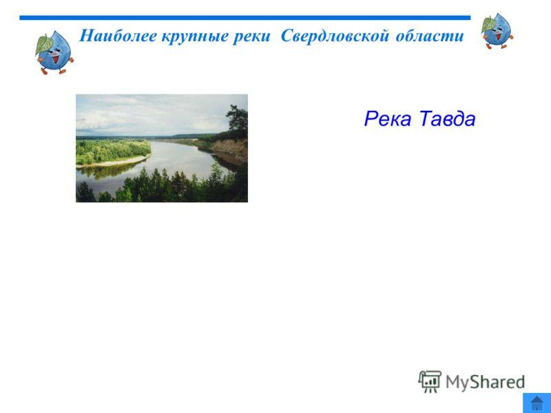 Река Тавда Наиболее крупные реки Свердловской области