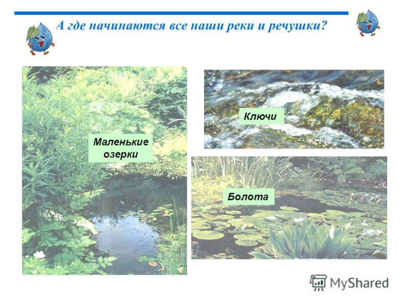 Маленькие озерки Болота Ключи А где начинаются все наши реки и речушки?