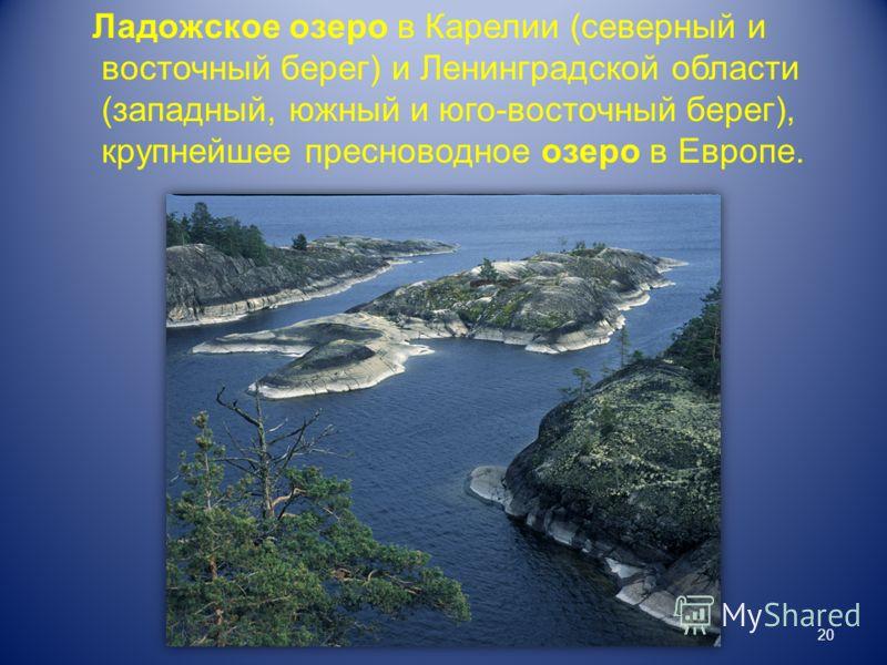 Ладожское озеро в Карелии (северный и восточный берег) и Ленинградской области (западный, южный и юго-восточный берег), крупнейшее пресноводное озеро в Европе. 20