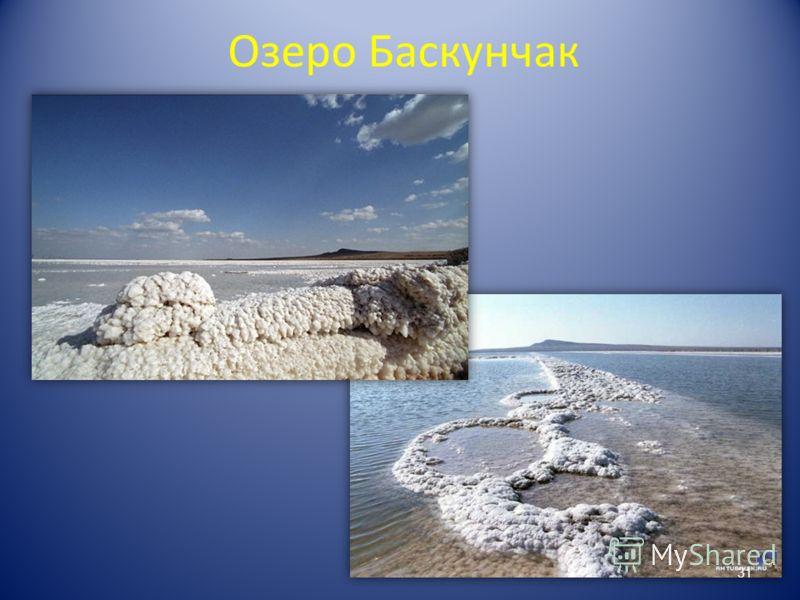 Озеро Баскунчак 31