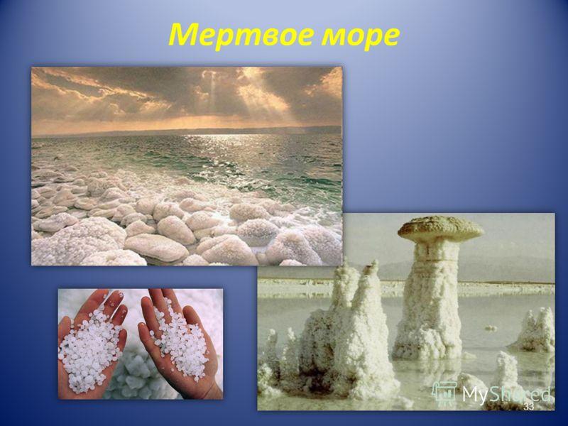 Мертвое море 33