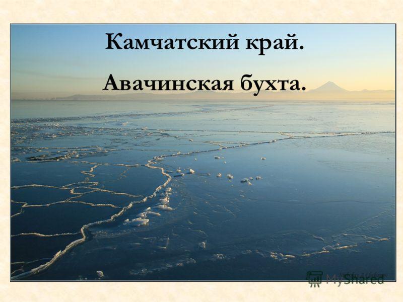Камчатский край. Авачинская бухта.