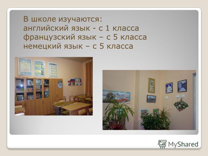 В школе изучаются: английский язык - с 1 класса французский язык – с 5 класса немецкий язык – с 5 класса