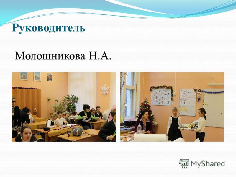 Руководитель Молошникова Н.А.