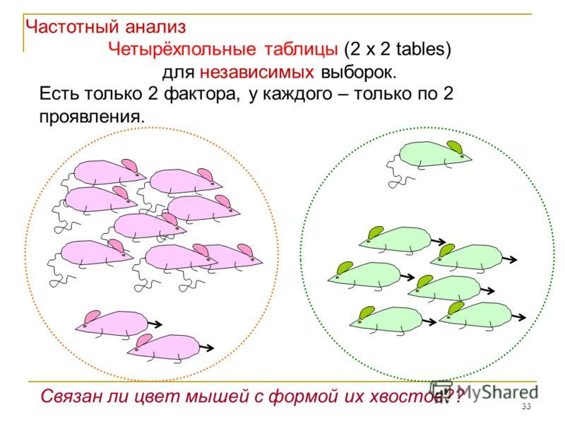 33 Четырёхпольные таблицы (2 x 2 tables) для независимых выборок. Есть только 2 фактора, у каждого – только по 2 проявления. Связан ли цвет мышей с формой их хвостов?? Частотный анализ