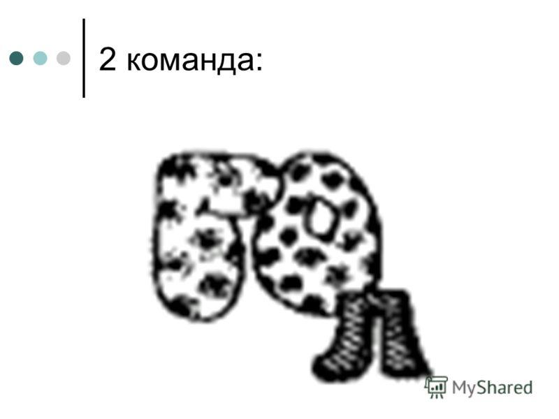 2 команда: