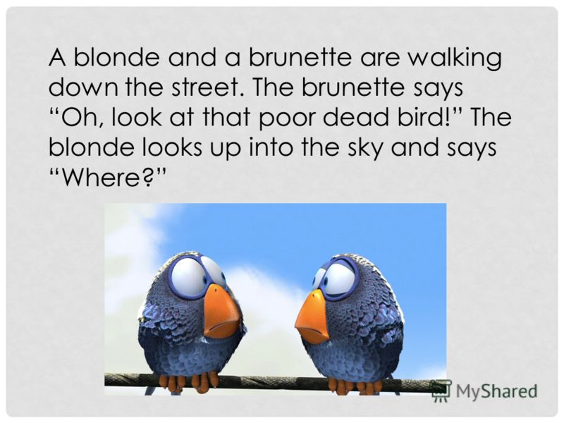 A blonde and a brunette are walking down the street. The brunette says Oh, look at that poor dead bird! The blonde looks up into the sky and says Where?