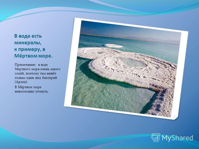 В воде есть минералы, к примеру, в Мёртвом море. Примечание: в воде Мертвого моря очень много солей, поэтому там живёт только один вид бактерий (Археи). В Мёртвом море невозможно утонуть.