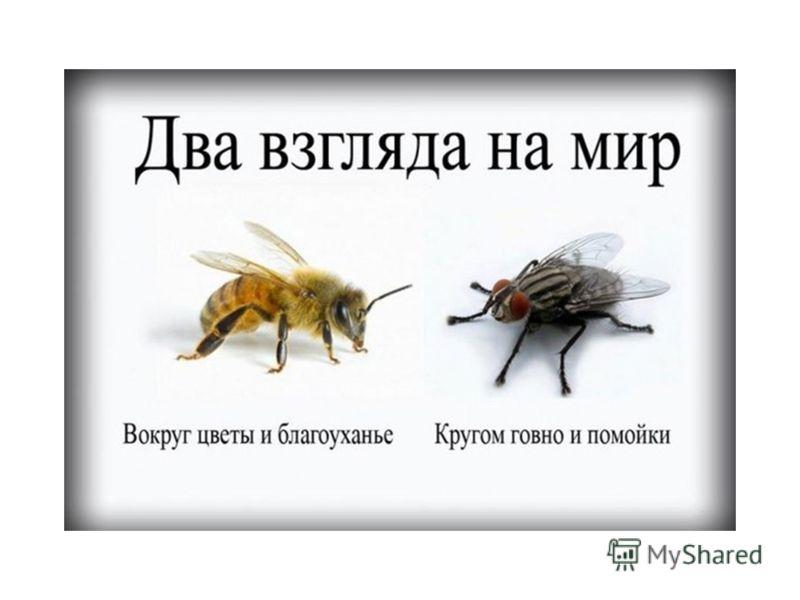 Москва, Георгиевский переулок, 1 стр.3 www.adconsult.ru | info@adconsult.ru +7 (495) 258-46-42