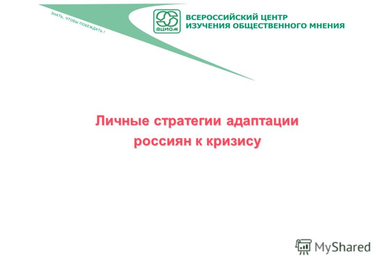 Личные стратегии адаптации россиян к кризису