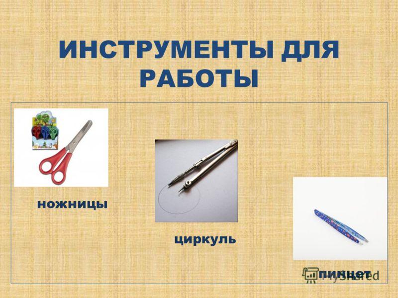 ИНСТРУМЕНТЫ ДЛЯ РАБОТЫ ножницы циркуль пинцет