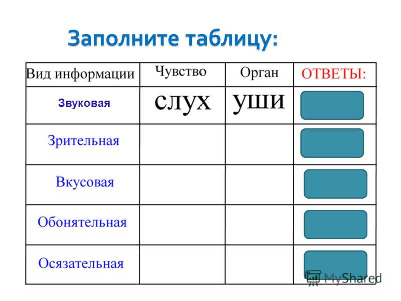 Заполните таблицу : Звуковая