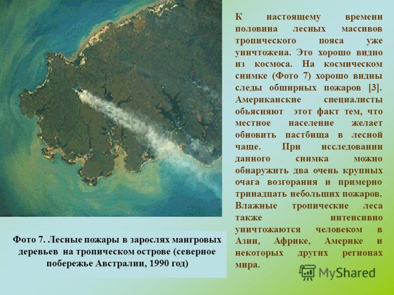 Фото 7. Лесные пожары в зарослях мангровых деревьев на тропическом острове (северное побережье Австралии, 1990 год) К настоящему времени половина лесных массивов тропического пояса уже уничтожена. Это хорошо видно из космоса. На космическом снимке (Ф
