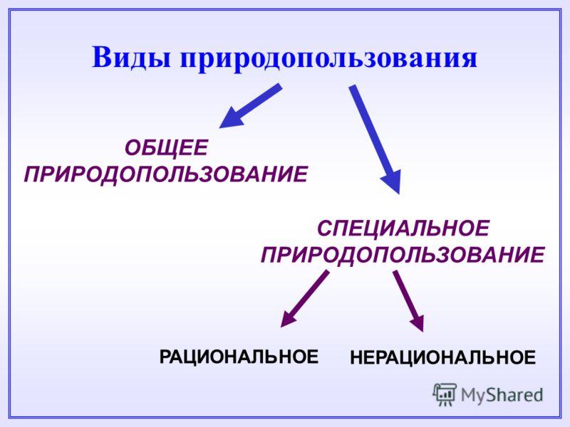 Решебник по русскому 8 класс пичугов 2011