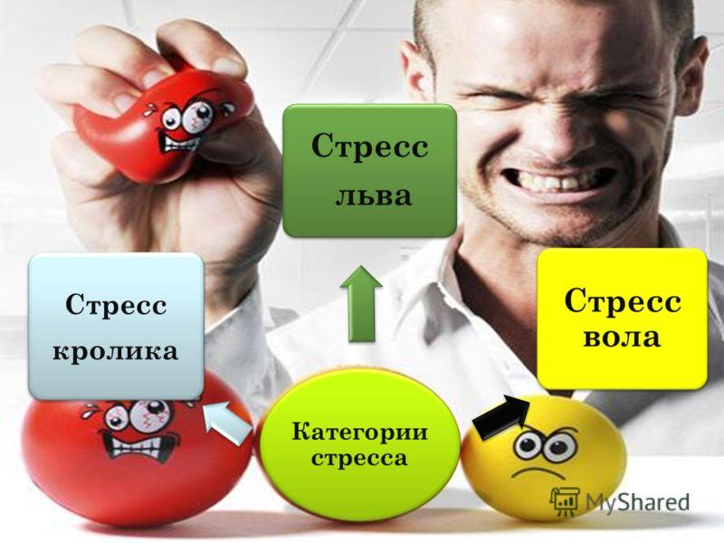 Категории стресса Стресс кролика Стресс льва Стресс вола