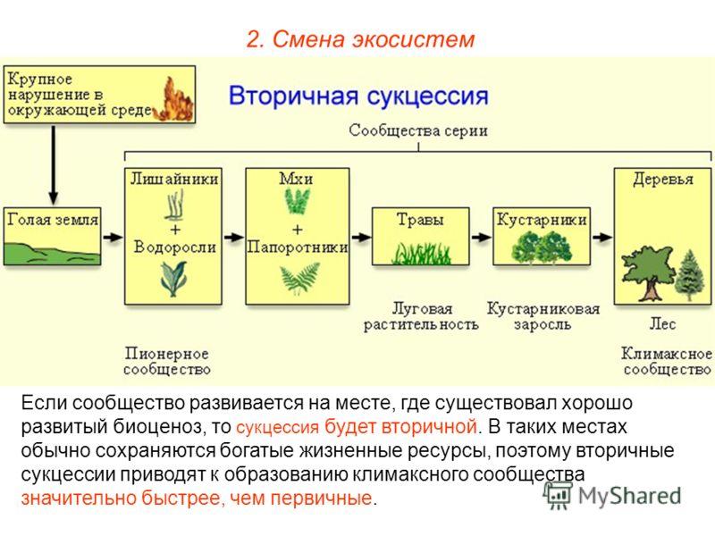 2. Смена экосистем Если сообщество развивается на месте, где существовал хорошо развитый биоценоз, то сукцессия будет вторичной. В таких местах обычно сохраняются богатые жизненные ресурсы, поэтому вторичные сукцессии приводят к образованию климаксно