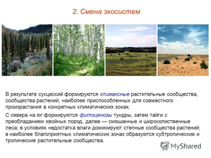 В результате сукцессий формируются климаксные растительные сообщества, сообщества растений, наиболее приспособленных для совместного произрастания в конкретных климатических зонах. С севера на юг формируются фитоценозы тундры, затем тайги с преоблада
