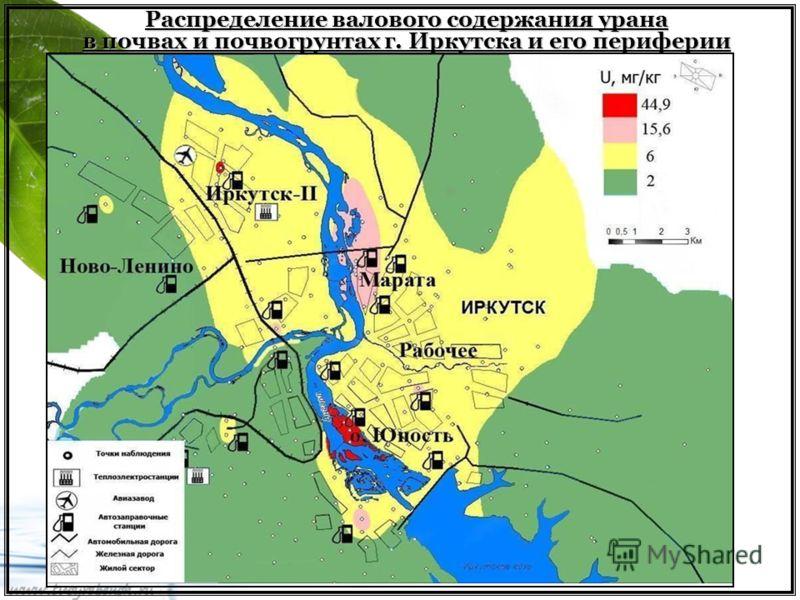 Распределение валового содержания урана в почвах и почвогрунтах г. Иркутска и его периферии