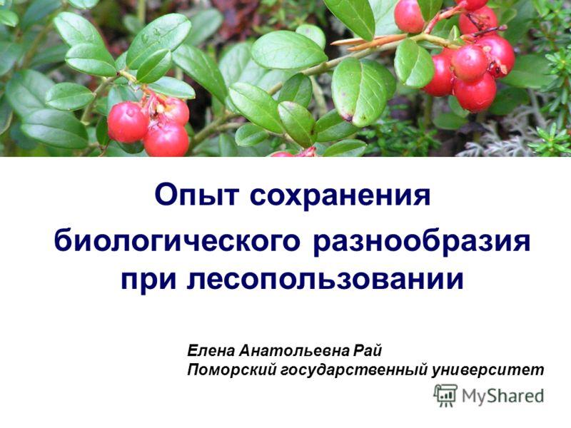 Опыт сохранения биологического разнообразия при лесопользовании Елена Анатольевна Рай Поморский государственный университет
