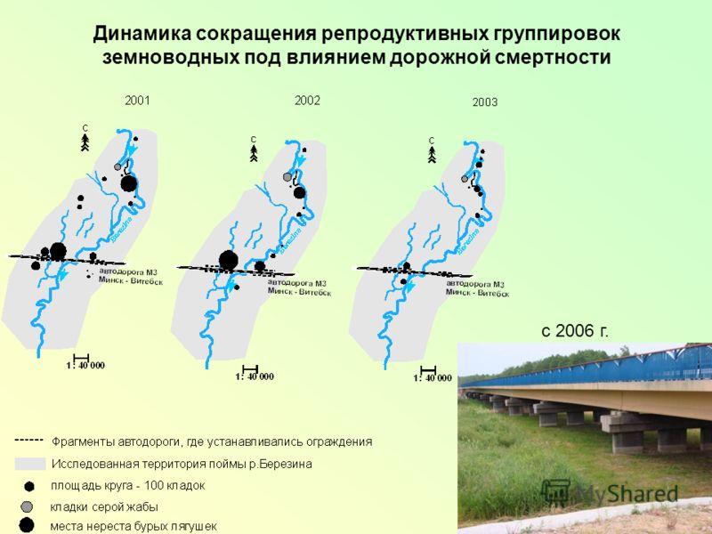 Динамика сокращения репродуктивных группировок земноводных под влиянием дорожной смертности с 2006 г.
