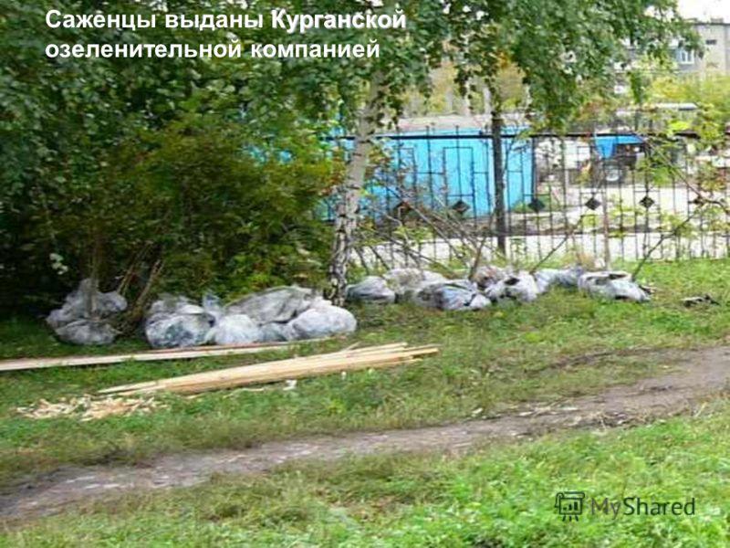Саженцы выданы К КК Курганской озеленительной компанией