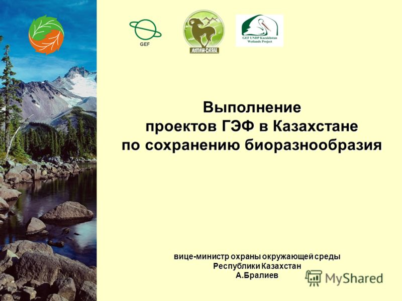 Выполнение проектов ГЭФ в Казахстане по сохранению биоразнообразия вице-министр охраны окружающей среды Республики Казахстан А.Бралиев