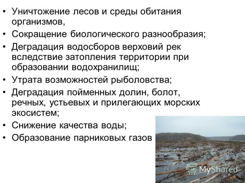 Уничтожение лесов и среды обитания организмов, Сокращение биологического разнообразия; Деградация водосборов верховий рек вследствие затопления территории при образовании водохранилищ; Утрата возможностей рыболовства; Деградация пойменных долин, боло