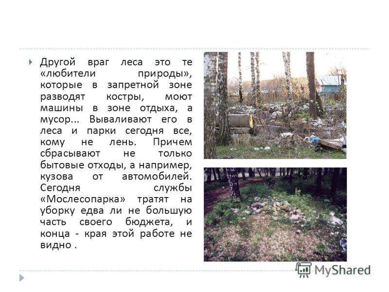Другой враг леса это те « любители природы », которые в запретной зоне разводят костры, моют машины в зоне отдыха, а мусор... Вываливают его в леса и парки сегодня все, кому не лень. Причем сбрасывают не только бытовые отходы, а например, кузова от а