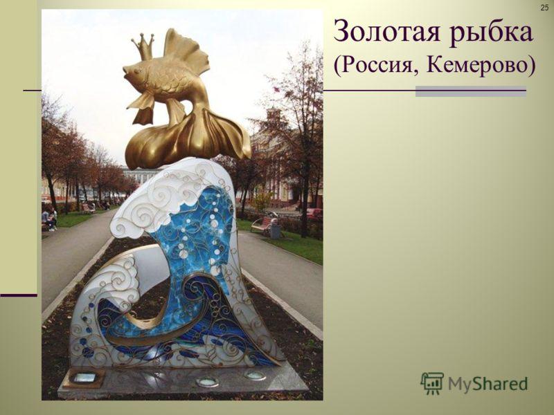 Золотая рыбка (Россия, Кемерово) 25
