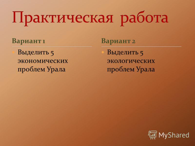 Вариант 1 Выделить 5 экономических проблем Урала Выделить 5 экологических проблем Урала Вариант 2