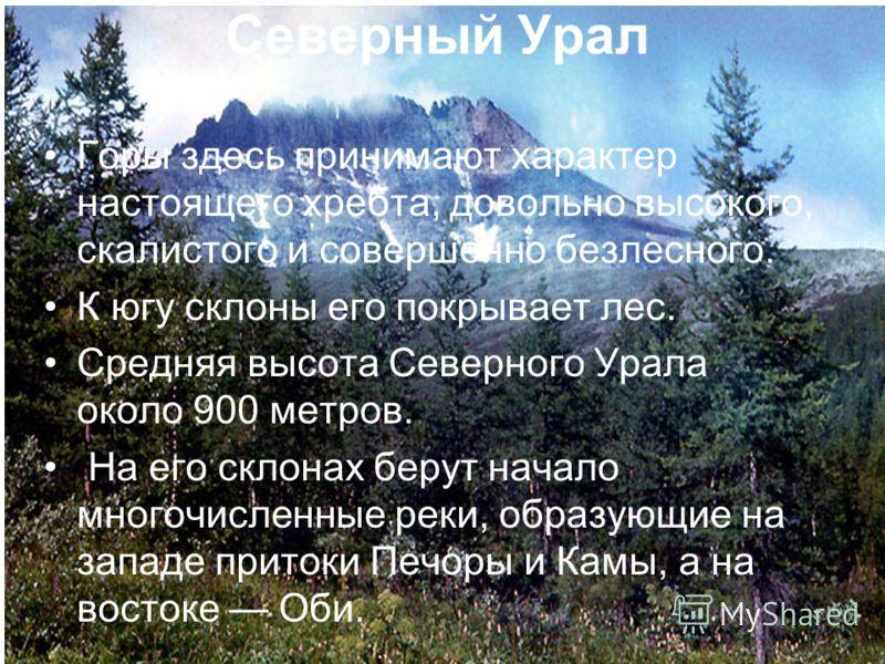 Горы здесь принимают характер настоящего хребта, довольно высокого, скалистого и совершенно безлесного. К югу склоны его покрывает лес. Средняя высота Северного Урала около 900 метров. На его склонах берут начало многочисленные реки, образующие на за
