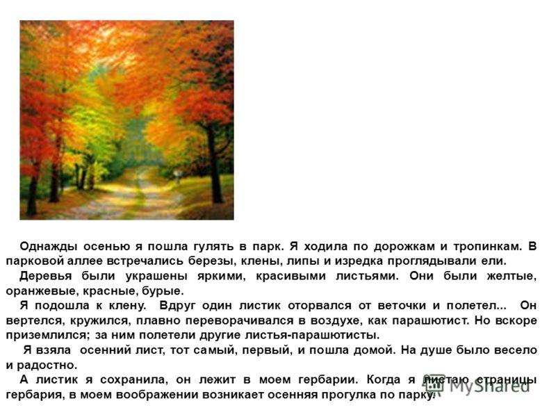 Однажды осенью я пошла гулять в парк. Я ходила по дорожкам и тропинкам. В парковой аллее встречались березы, клены, липы и изредка проглядывали ели. Деревья были украшены яркими, красивыми листьями. Они были желтые, оранжевые, красные, бурые. Я подош