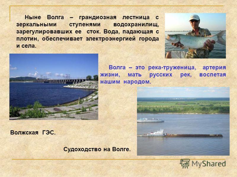 Ныне Волга – грандиозная лестница с зеркальными ступенями водохранилищ, зарегулировавших ее сток. Вода, падающая с плотин, обеспечивает электроэнергией города и села. Волга – это река-труженица, артерия жизни, мать русских рек, воспетая нашим народом