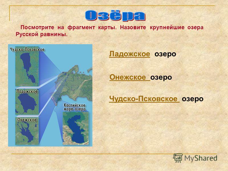 Посмотрите на фрагмент карты. Назовите крупнейшие озера Русской равнины. ЛадожскоеЛадожское озеро Онежское озероОнежское Чудско-Псковское Чудско-Псковское озеро