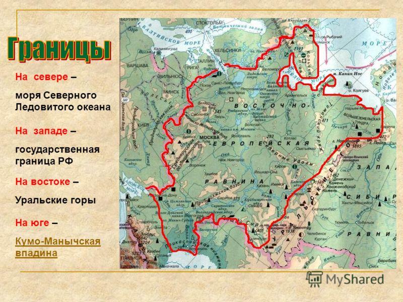 На севере – моря Северного Ледовитого океана На западе – государственная граница РФ На востоке – Уральские горы На юге – Кумо-Манычская впадина