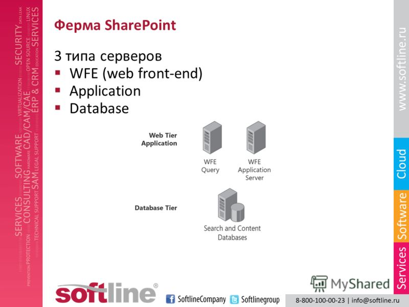 Ферма SharePoint 3 типа серверов WFE (web front-end) Application Database