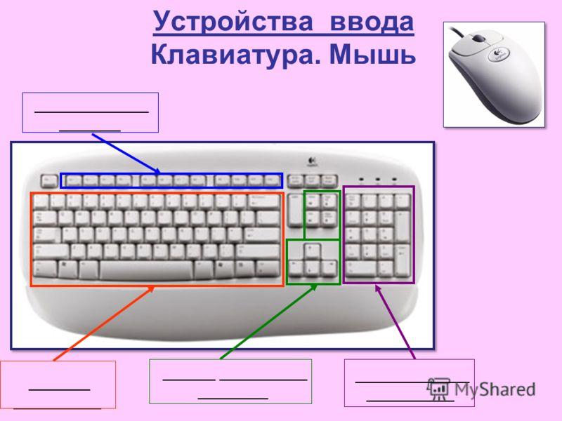 Устройства ввода Клавиатура. Мышь