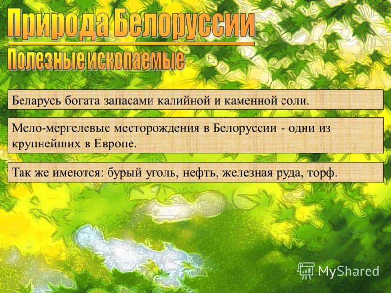 Беларусь богата запасами калийной и каменной соли. Мело-мергелевые месторождения в Белоруссии - одни из крупнейших в Европе. Так же имеются: бурый уголь, нефть, железная руда, торф.