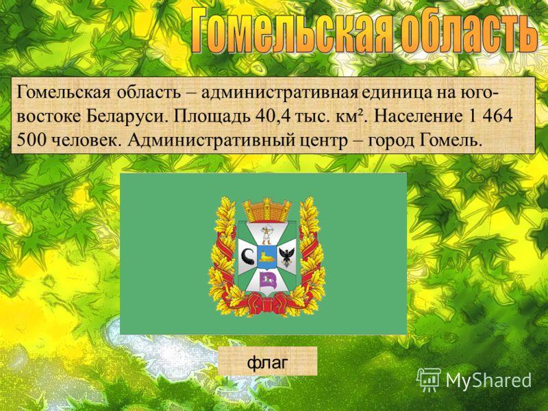 Гомельская область – административная единица на юго- востоке Беларуси. Площадь 40,4 тыс. км². Население 1 464 500 человек. Административный центр – город Гомель. герб флаг