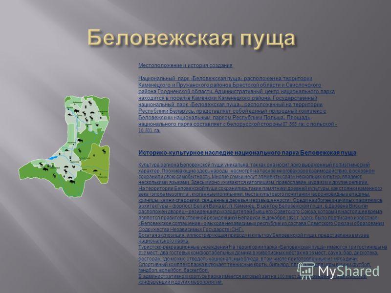 Местоположение и история создания Национальный парк « Беловежская пуща » расположен на территории Каменецкого и Пружанского районов Брестской области и Свислочского района Гродненской области. Административный центр национального парка находится в по
