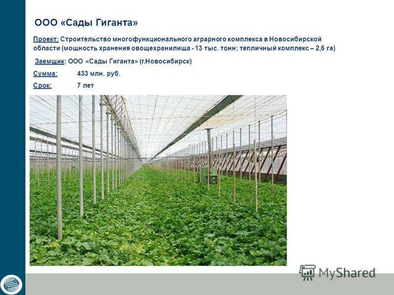 Проект: Строительство многофункционального аграрного комплекса в Новосибирской области (мощность хранения овощехранилища - 13 тыс. тонн; тепличный комплекс – 2,6 га) Заемщик: ООО «Сады Гиганта» (г.Новосибирск) Сумма: 433 млн. руб. Срок: 7 лет ООО «Са