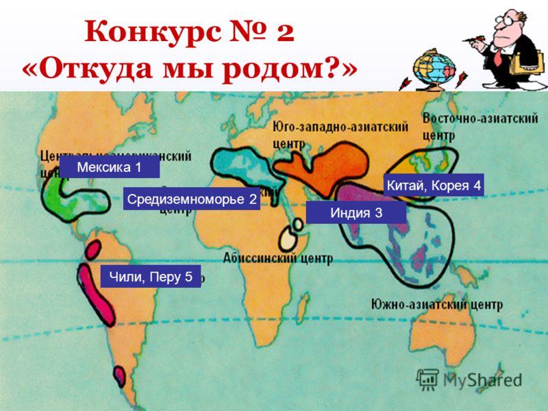 Конкурс 2 «Откуда мы родом?» Мексика 1 Чили, Перу 5 Индия 3 Средиземноморье 2 Китай, Корея 4