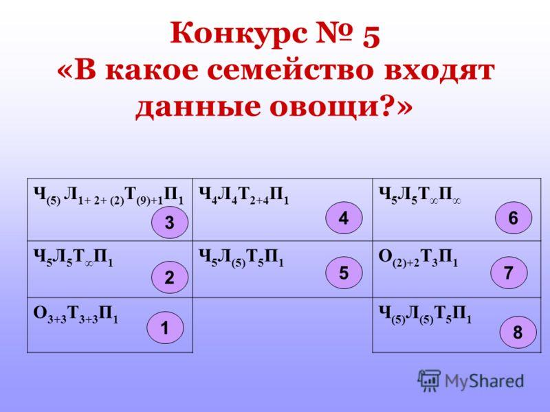 Конкурс 5 «В какое семейство входят данные овощи?» Ч (5) Л 1+ 2+ (2) Т (9)+1 П 1 Ч 4 Л 4 Т 2+4 П 1 Ч 5 Л 5 Т П Ч 5 Л 5 Т П 1 Ч 5 Л (5) Т 5 П 1 О (2)+2 Т 3 П 1 О 3+3 Т 3+3 П 1 Ч (5) Л (5) Т 5 П 1 46 8 5 3 2 1 7