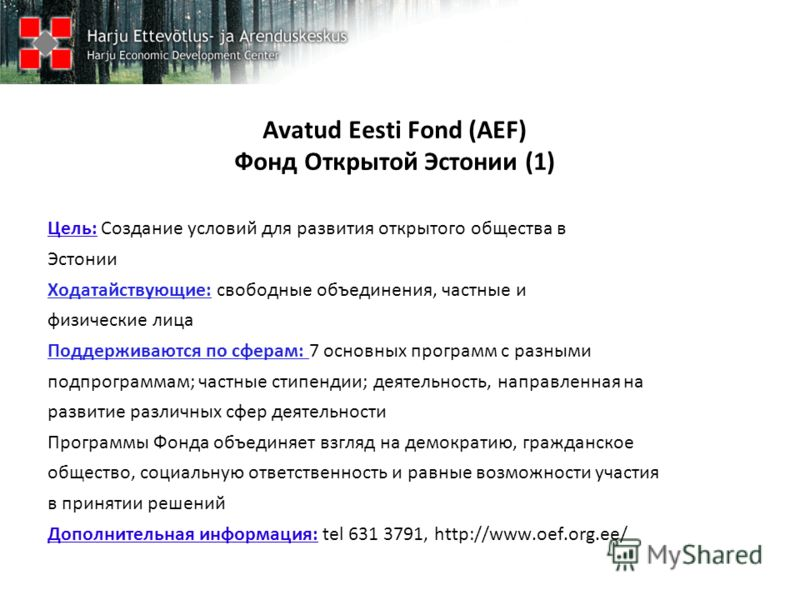 Avatud Eesti Fond (AEF) Фонд Открытой Эстонии (1) Цель: Создание условий для развития открытого общества в Эстонии Ходатайствующие: свободные объединения, частные и физические лица Поддерживаются по сферам: 7 основных программ с разными подпрограммам