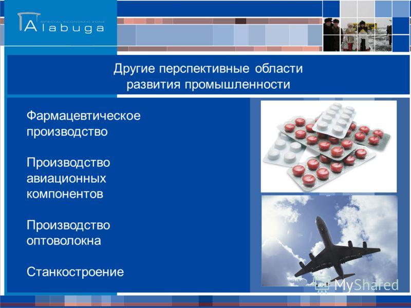 Другие перспективные области развития промышленности Фармацевтическое производство Производство авиационных компонентов Производство оптоволокна Станкостроение