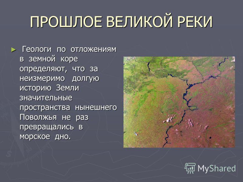 ПРОШЛОЕ ВЕЛИКОЙ РЕКИ Геологи по отложениям в земной коре определяют, что за неизмеримо долгую историю Земли значительные пространства нынешнего Поволжья не раз превращались в морское дно. Геологи по отложениям в земной коре определяют, что за неизмер