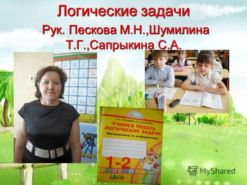 Логические задачи Рук. Пескова М.Н.,Шумилина Т.Г.,Сапрыкина С.А.